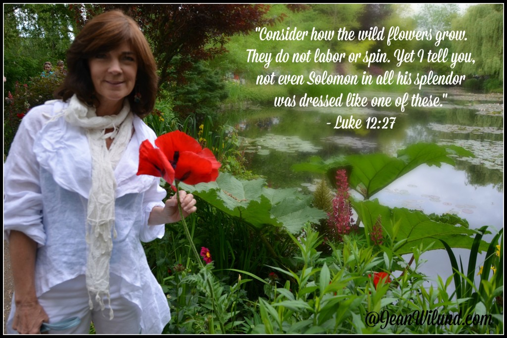 Consider the wildflowers! ~ Luke 12:27