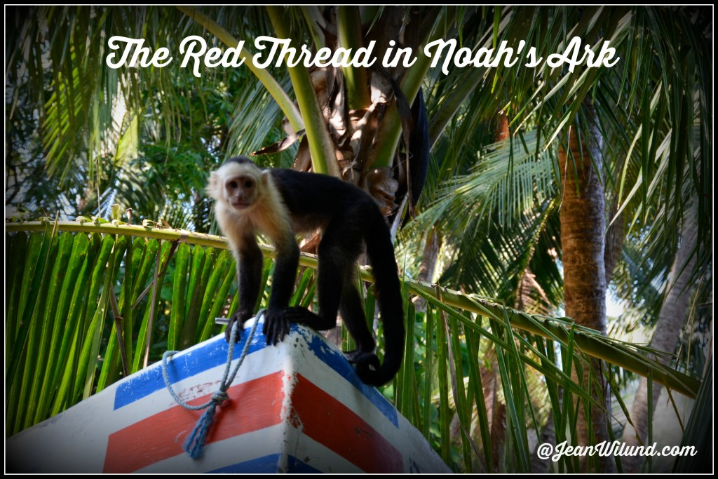 Click to Read: Discover Jesus Christ in Noah's Ark -- The Work (The Red Thread)