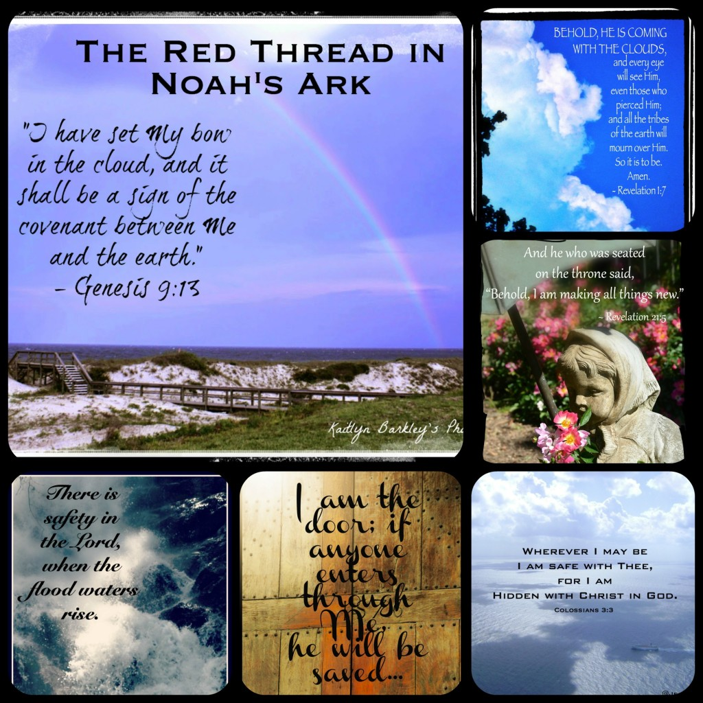 The Red Thread in Noah's Ark -- The Summary