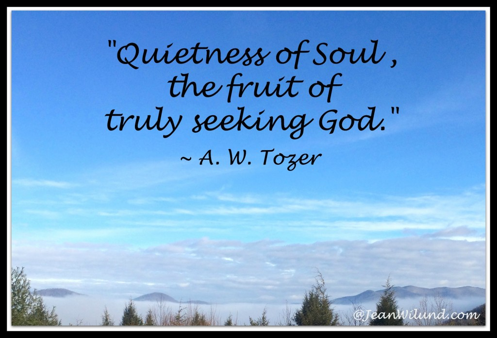 """Quietness of Soul, the fruit of truly seeking God."" ~ A. W. Tozer's Classic ""The Pursuit of God"""