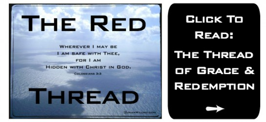 The Red Thread: Follow the Thread of Grace & Redemption Found in the Blood of Jesus Christ and Woven Through the Bible