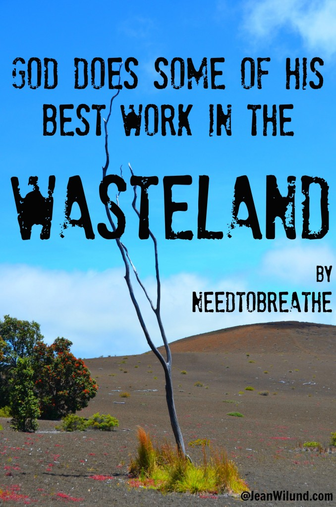 God does some of His best work in the wasteland. Listen to WASTELAND by Needtobreathe via www.JeanWilund.com