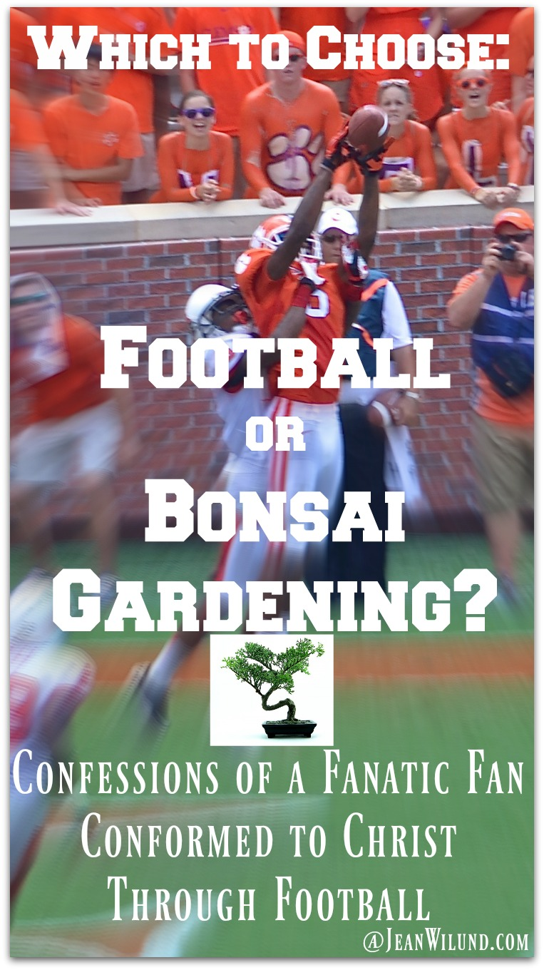 Fret over your football team so much you'd consider giving it up for bonsai gardening? You don't have to! Be conformed to Christ through football instead. via www.JeanWilund.com