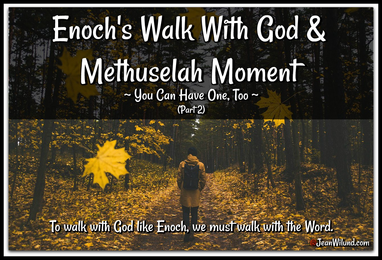 Enoch walked with God & had a Methuselah Moment (You Can, Too) Part 2 via www.JeanWilund.com